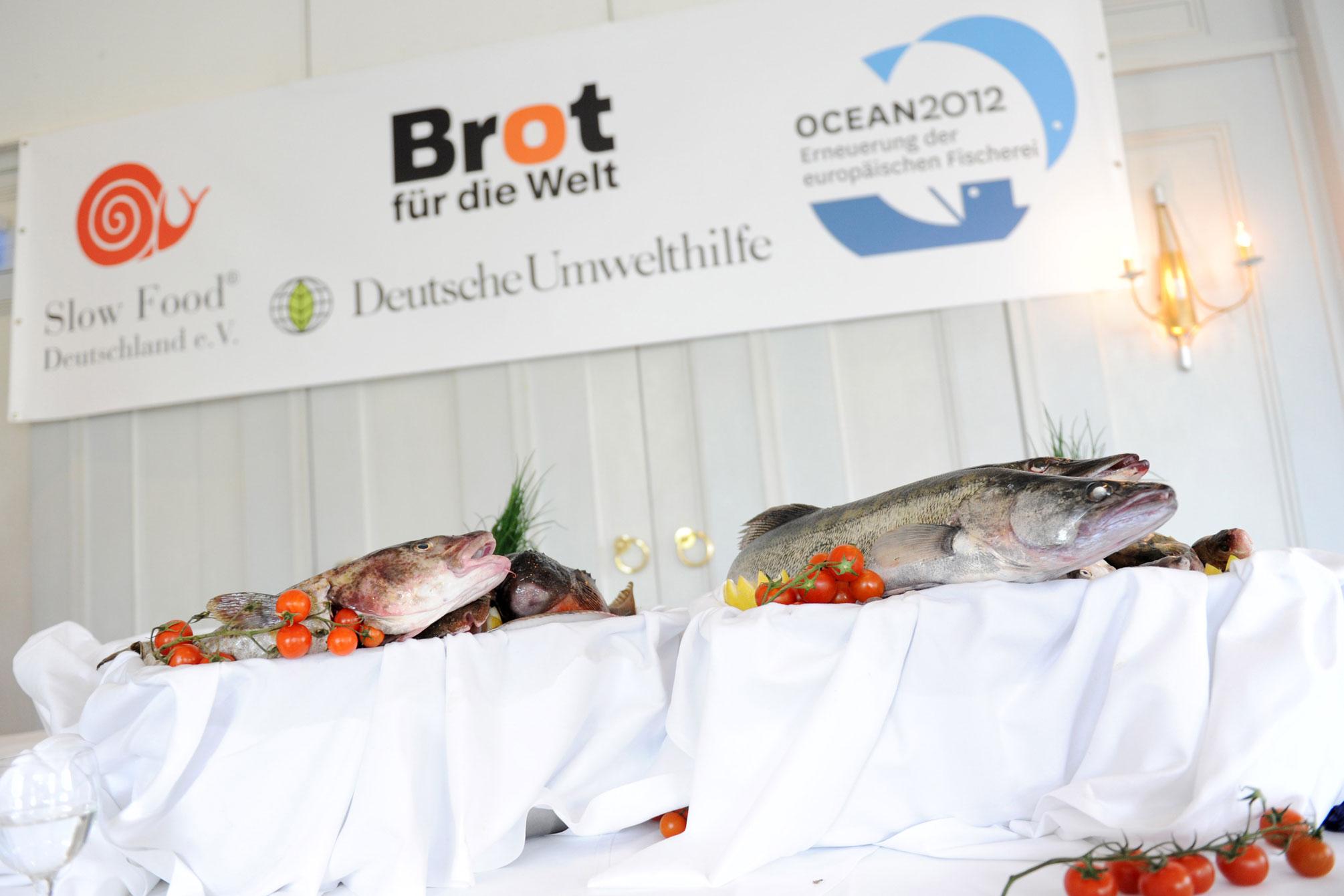Pressekonferenz mit Bundesministerin Ilse Aigner zur EU-Fischereipolitik