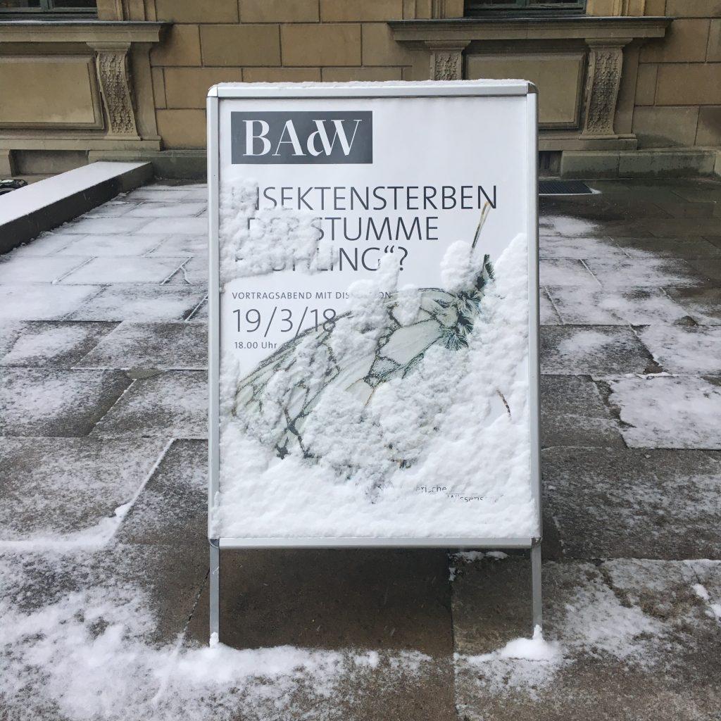 """Bayerische Akademie der Wissenschaften: Eingang zur Veranstaltung """"Insektensterben: Der stumme Frühlng?"""""""